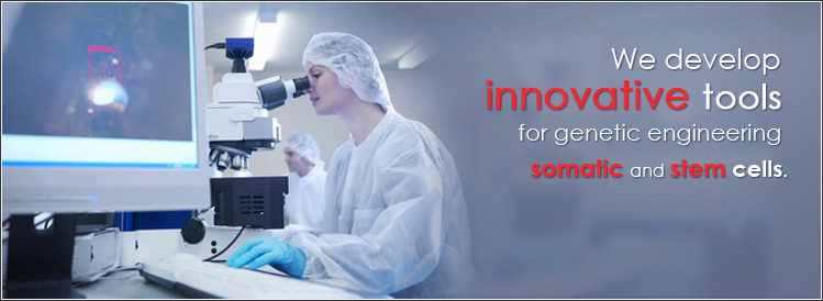 We develop innovative tools for genetic engineering somatic and stem cells.
